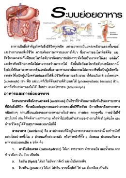 ชีววิทยา 2 _การย่อยอาหาร : ครูณัฐิดา วงษ์สายตา ห