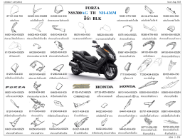 forza_nss300ag_th_20150804