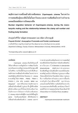พฤติกรรมการเคลื่อนย้ายนิวเคลียสของ Coprinopsis cinerea ใ