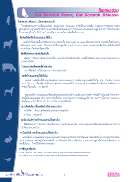 โรคแมวข่วน Cat Scratch Fever, Cat Scratch Disease