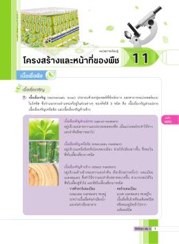 เฉลยส่วนหน้า บฝ.ชีววิทยา ม.4-6 เล่ม 3.indd