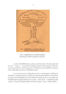 ภาพที่1 ทฤษฎีต้นไม้จริยธรรม แสดงจิตลักษณะพื้