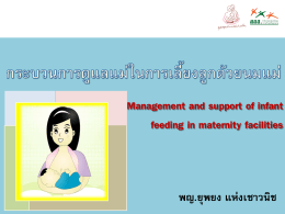 Thai Breastfeeding Center Foundation 2012