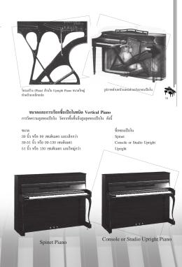 ขนาดและการเรียกชื่อเปียโนชนิด Vertical Piano