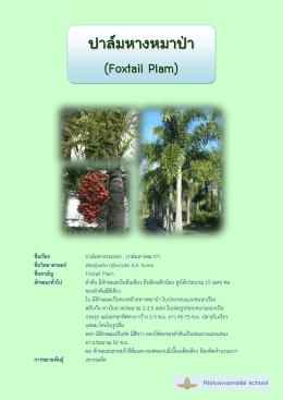 1 foxtail