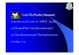 โรคสัตว์ปีก(Poultry Diseases) รองศาสตราจารย์ น.สพ. ดร. ทวีศ