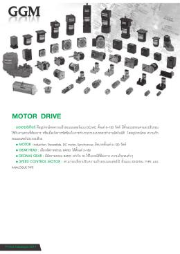 ggm motor drive - Primusthai.com