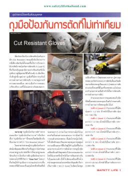 03 P PPE