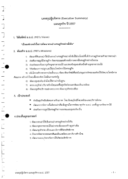 (Executive Summary) แผนธุรกิจปี 2557