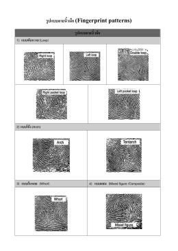 รูปแบบลายนิ้วมือ (fingerprint patterns)