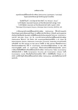 บทคัดย่อภาษาไทย อนุกรมวิธานของผีเสื้อหนอนม้