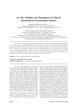 In Vitro Motility of a Population of Clinical Burkholderia
