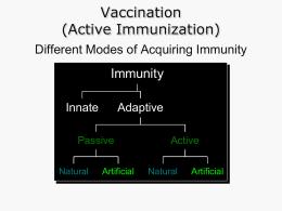 Vaccination (Active Immunization)