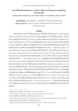 ผลการใช้ฮอร์โมนเอฟเอสเอช 3 Superovulatory Response of Thai Black