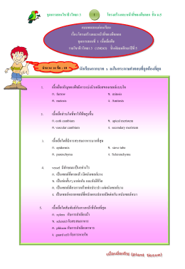 ชุดการสอนวิชาชีววิทยา 3 โครงสร้างและหน้าที่ของพืชดอก ชั้น ม.5 2