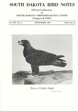 SOUTH DAl{OTA BffiD NOTES - South Dakota Ornithologists` Union