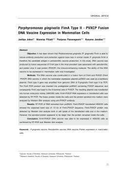 "Porphyromonas gingivalis %HL 3XOD (( /57""/ %TRHNM #"