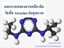 ผลกระทบของสารเคมีกาจัด วัชพืช Atrazine ต่อสุขภาพ - Thai-PAN