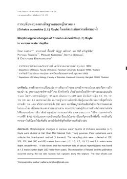 การเปลี่ยนแปลงทางสัณฐานของหญ  าคาทะเล (Enhalus acoroides(Lf