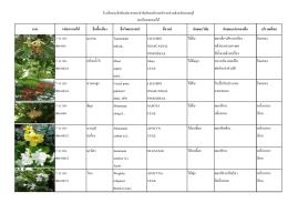 ภาพ รหัสพรรณไม้ ชื่อพื้นเมือง ชื่อวิทยาศาสตร