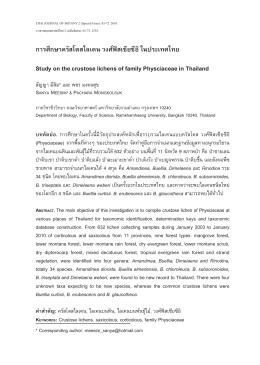 การศึกษาครัสโตสไลเคน วงศ  ฟ  สเซียซีอิในประเท