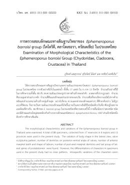การตรวจสอบลักษณะทางสัณฐานวิทยาของ Ephemeroporus barroisi group