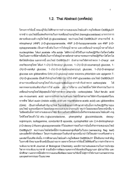 1.2. Thai Abstract (บทคัดย่อ)
