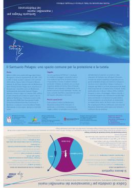 Plaquette Pelagos IT6 - Comune di Rosignano Marittimo