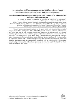 การจําแนกชนิดแบคทีเรียในสกุล AsaiaYamada et al. 2000 โดย