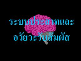 Nervous syst.,Hormone,Behavior Powerpoint presentation