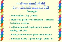 การจัดการทุ่งหญ้าเพื่อให้ มีอาหารสัตว์เพียงพอตลอดทั้งปี Strategies