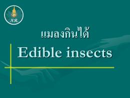 แมลงกินได้ Edible insects - คณะทรัพยากรธรรมชาติ
