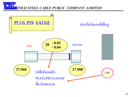 plug gauge - Thai Steel Cable PCL