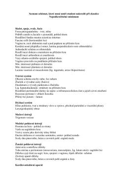 Seznam schémat nutných pro závěrečnou zkoušku z anatomie