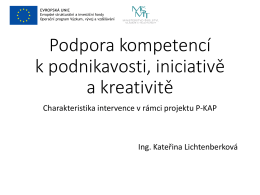 Podpora kompetencí k podnikavosti, iniciativě a kreativitě (formát pdf