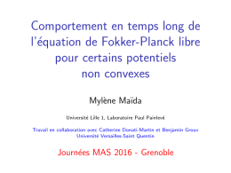 Comportement en temps long de l`équation de Fokker