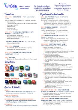 Version Print cv pdf
