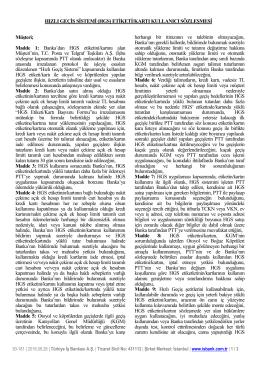 HGS - Türkiye İş Bankası A.Ş.