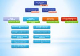 organizasyon şeması akademik