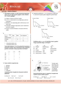 Sindirim Sistemi I - Ölçme, Değerlendirme ve Sınav Hizmetleri Genel