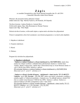 Zápis a usnesení č.6