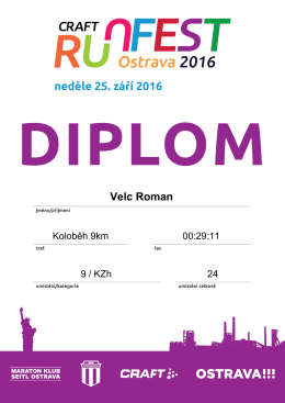 Velc Roman - On line System