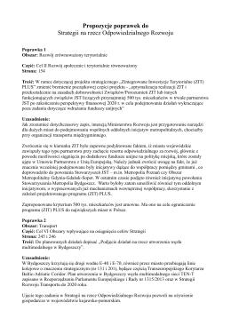 Propozycje poprawek do Strategii na rzecz Odpowiedzialnego
