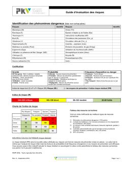 Guide d`identification des risques