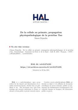 De la cellule au primate, propagation physiopathologique - Tel