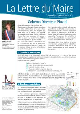 Schéma Directeur Pluvial