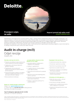 Audit In-charge