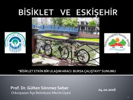 Prof. Dr. Gülten SÖNMEZ SEBER