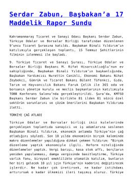 Serdar Zabun, Başbakan`a 17 Maddelik Rapor Sundu