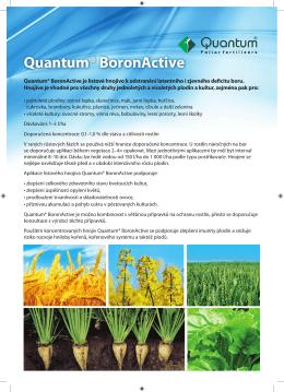 Quantum BoronActive.indd